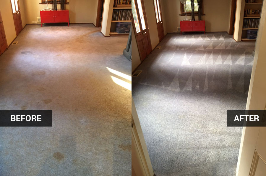 Easiest Way for Carpet Cleaning Without Hassling